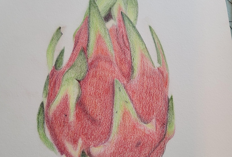 Dragon Fruit, 1st attempt