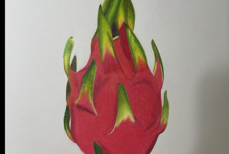 Dragon fruit with Akhil B