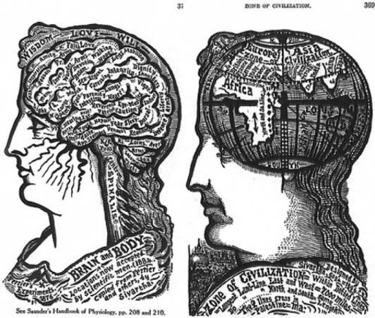 Conceptual Map: Navigating My Brain