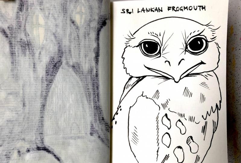 7-days of sketchbook drawings