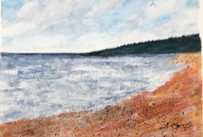 A Cloudy Beach