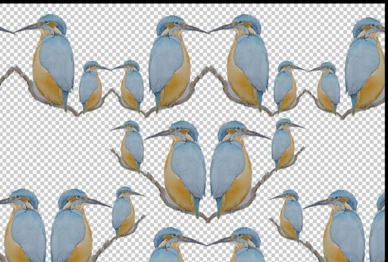 Kingfisher Family 1