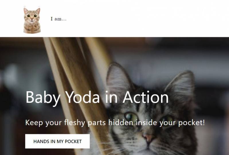 Me & Yoda Test project 4 CSS 101