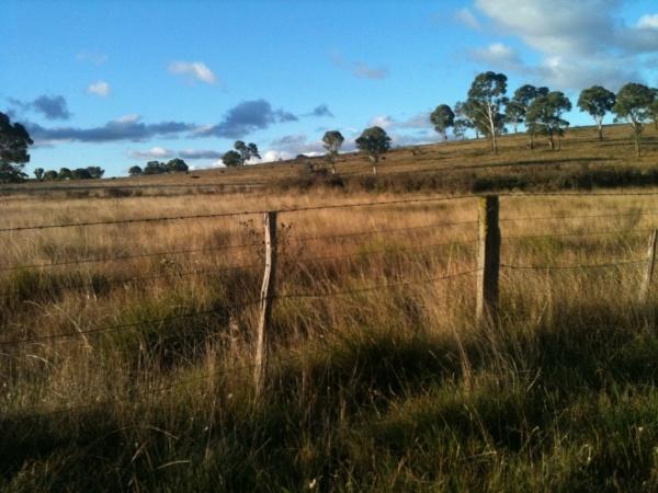 Paddocks of Kurrajong: A patchwork of an Australian farm