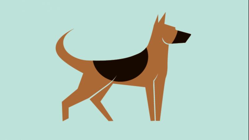 german shepherd logo skillshare projects rh skillshare com  german shepherd logo design