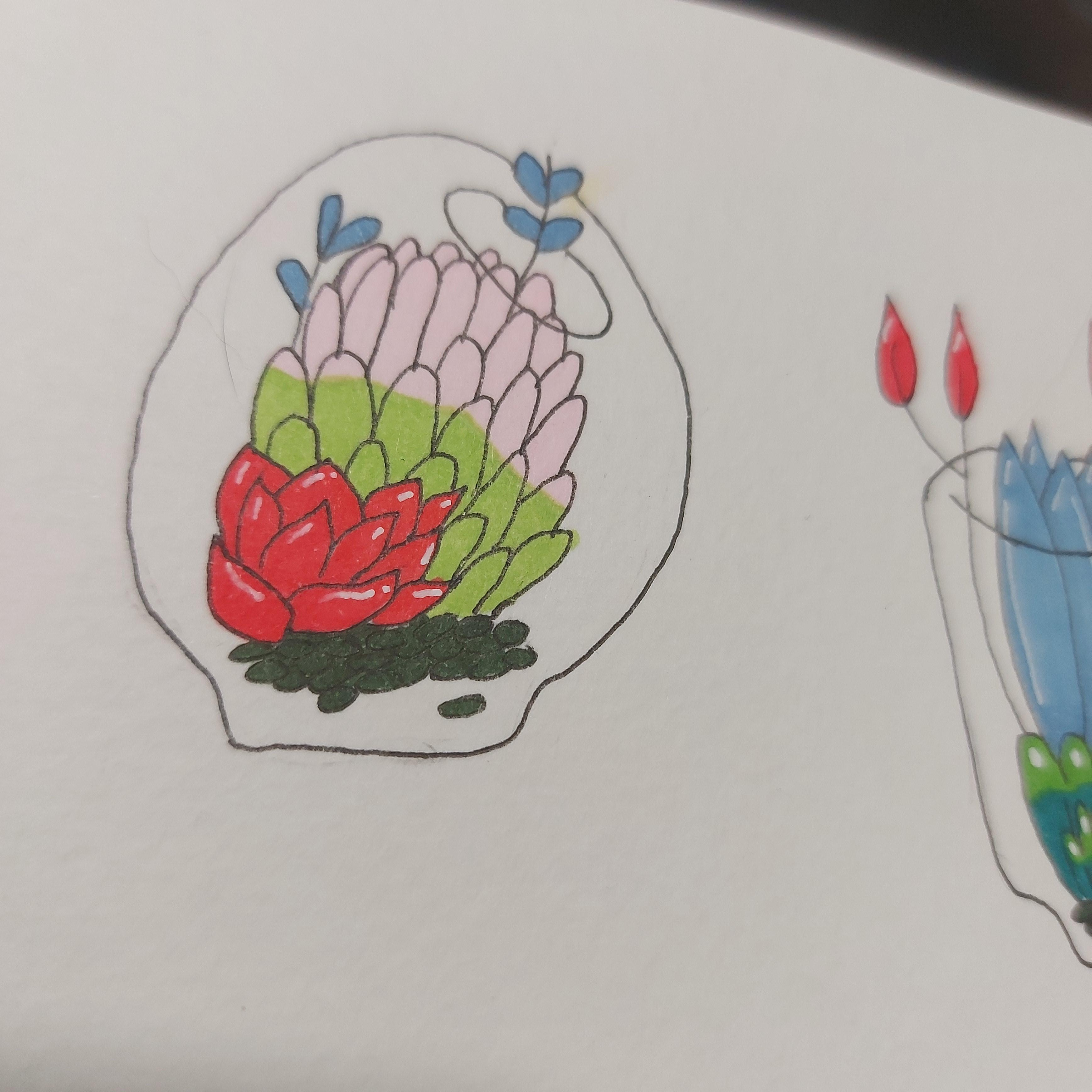 How To Draw Cute Succulent Plants In Terrarium Skillshare Projects