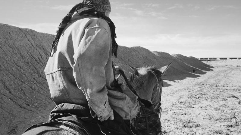 Desert Cowboy Life