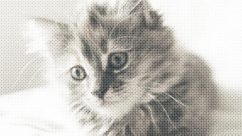 Halftone Cat