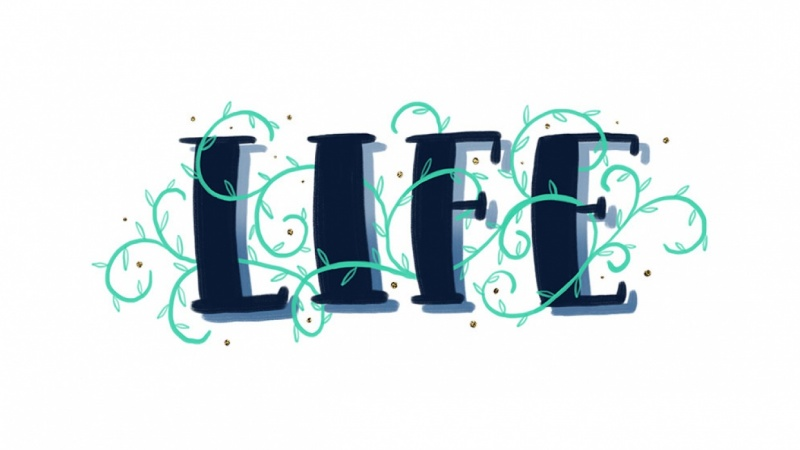 Sample Project: LIFE