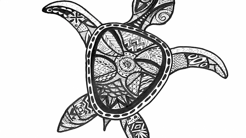 Final Turtle Drawing