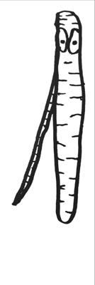 151db81e