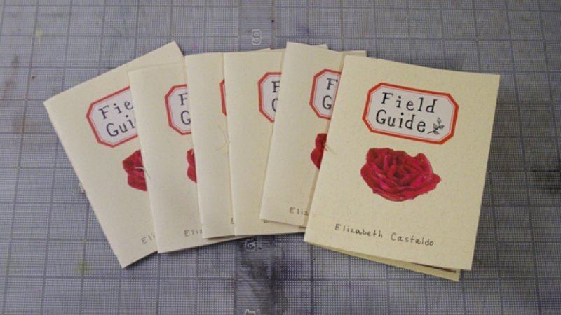 "*Sample Project*  ""Field Guide"""