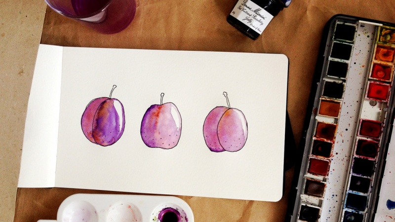 Plums and watercolour