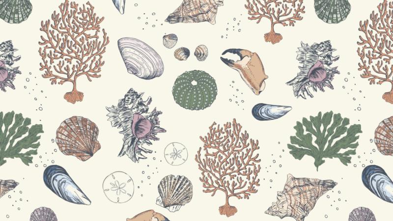 3 focal point prints in 3 weeks: Christmas Creatures, Sea Treasures & Auburn Alley