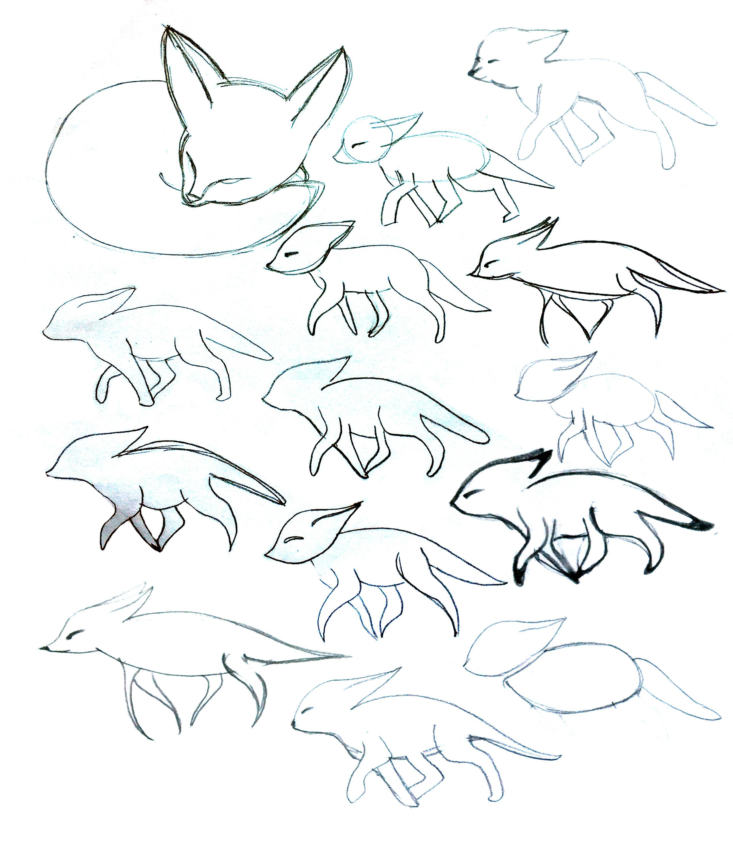 fennec skillshare projects