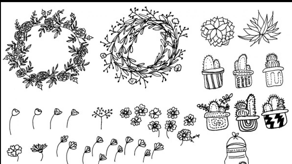 Botanical Line Drawing | Peggy Dean | Skillshare