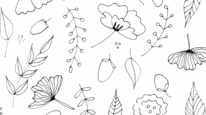 Line Art Practice : Botanical line drawing practice and pattern skillshare