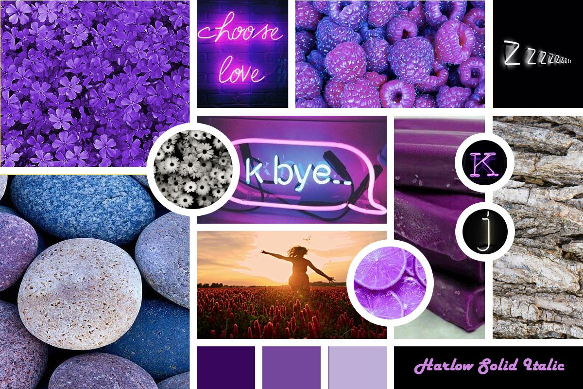 Purple Reign Skillshare Projects