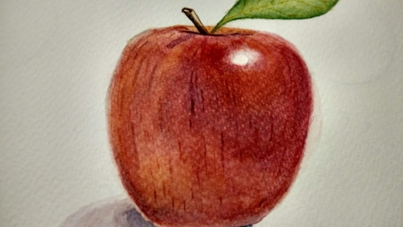 Draw an apple a day ... ;)