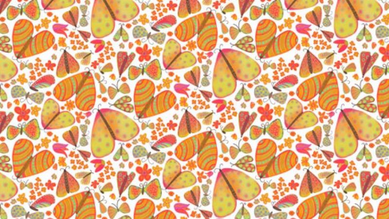 Moths Pattern