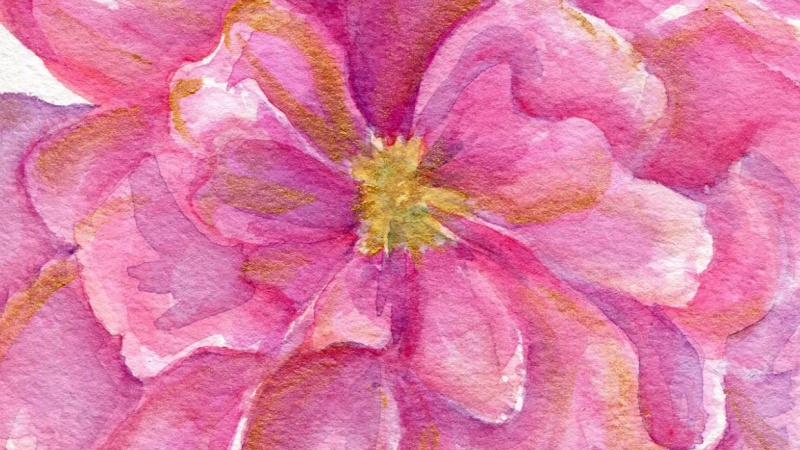 Pink Rose Watercolor Iridescent Bright Gold Metallic Highlights, Purple Hydrangeas with Silver