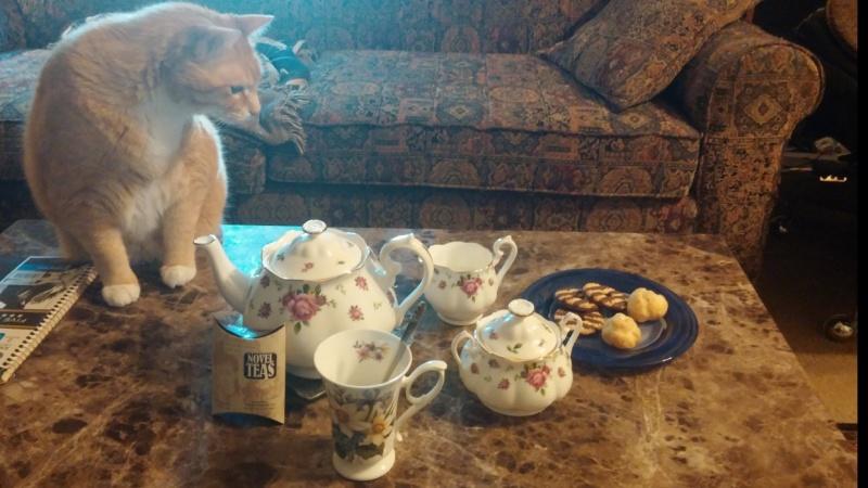 Feel Better Tea and New Teapot