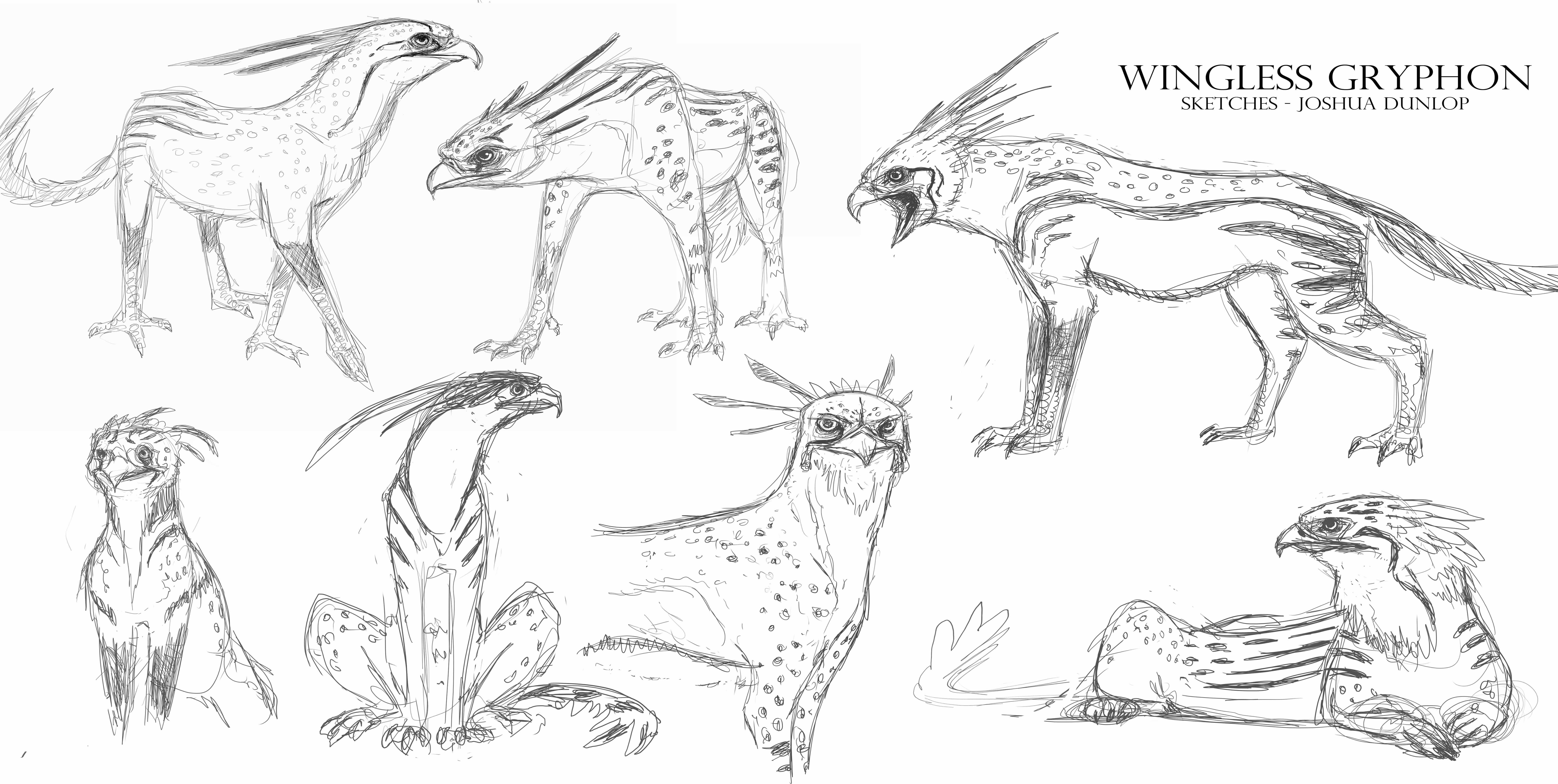 Wingless African Gryphons - Joshua Dunlop | Skillshare Projects