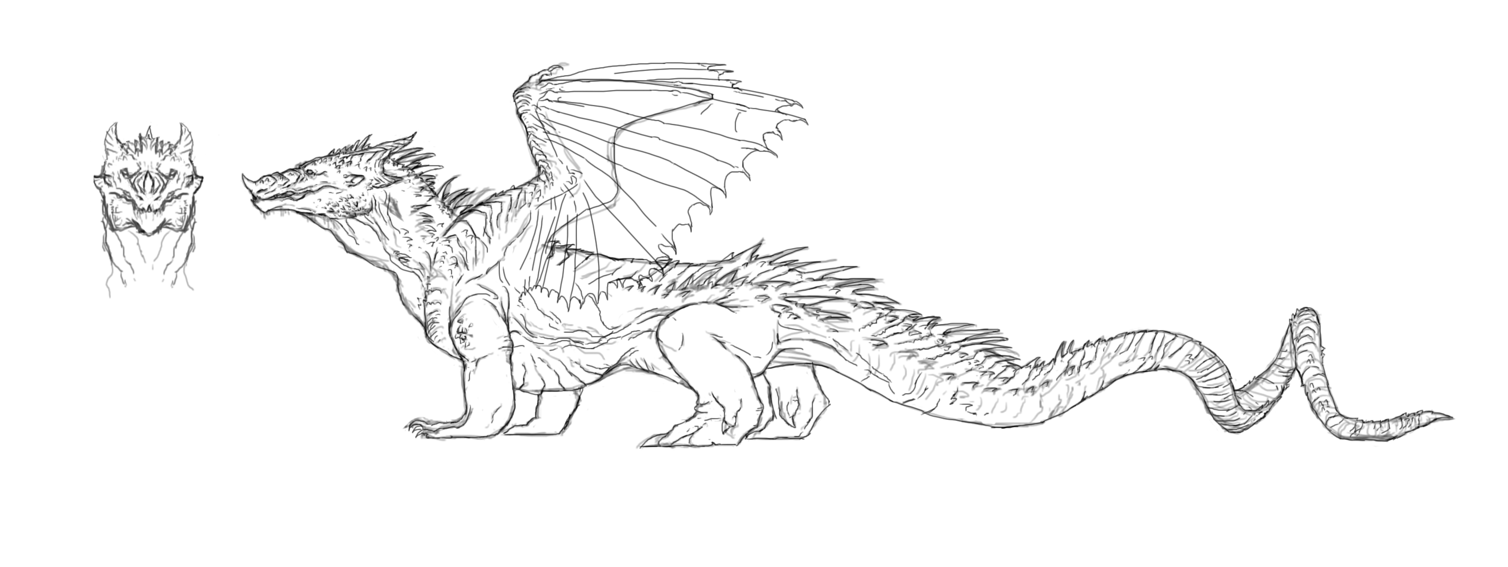 Next Are The Colors Of The Dragon I Wanted To Go For A Wild, Dark Komodo  Dragon Coloring Pages How Do You Draw