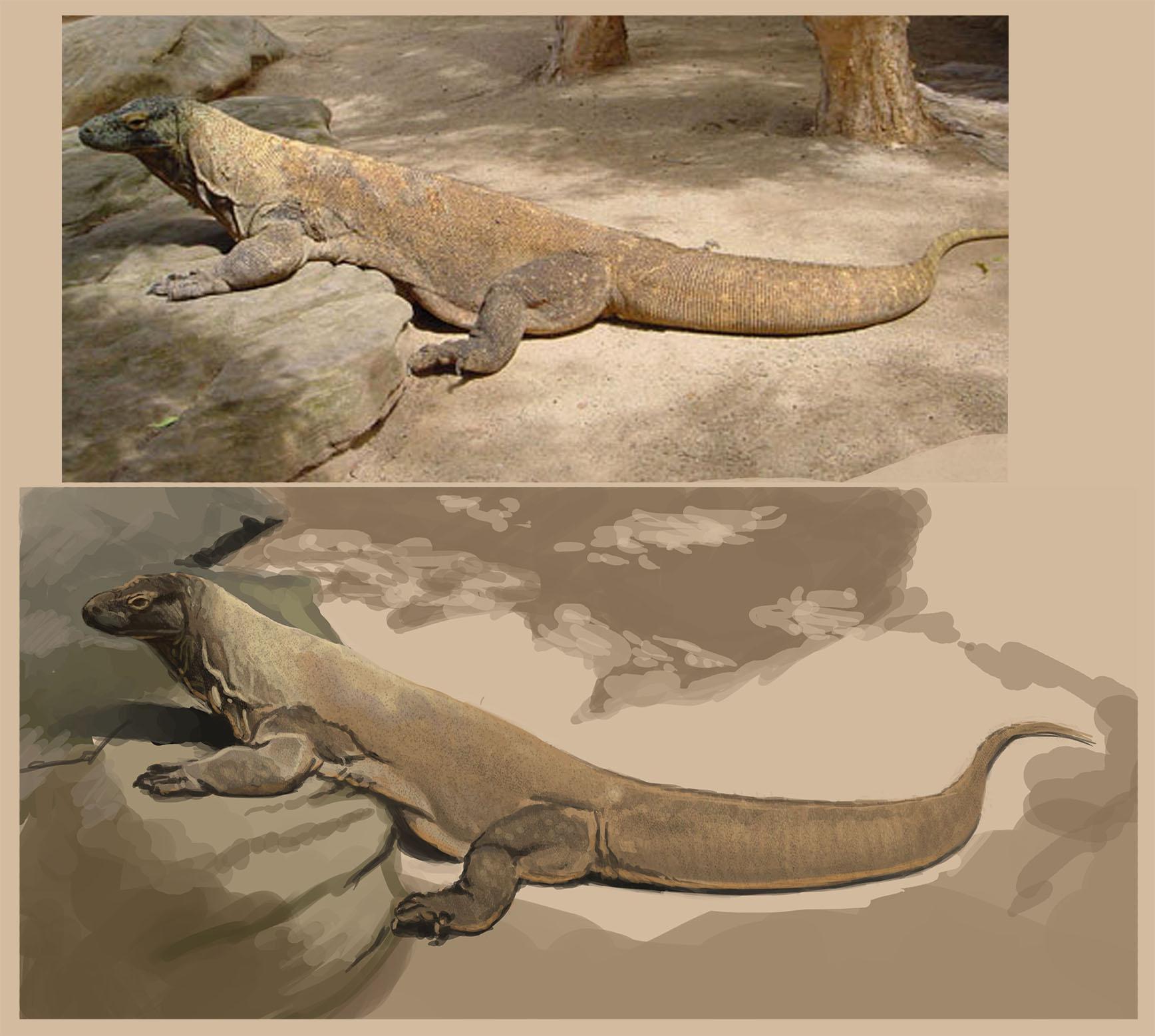 Creature design - Reptile | Skillshare Projects