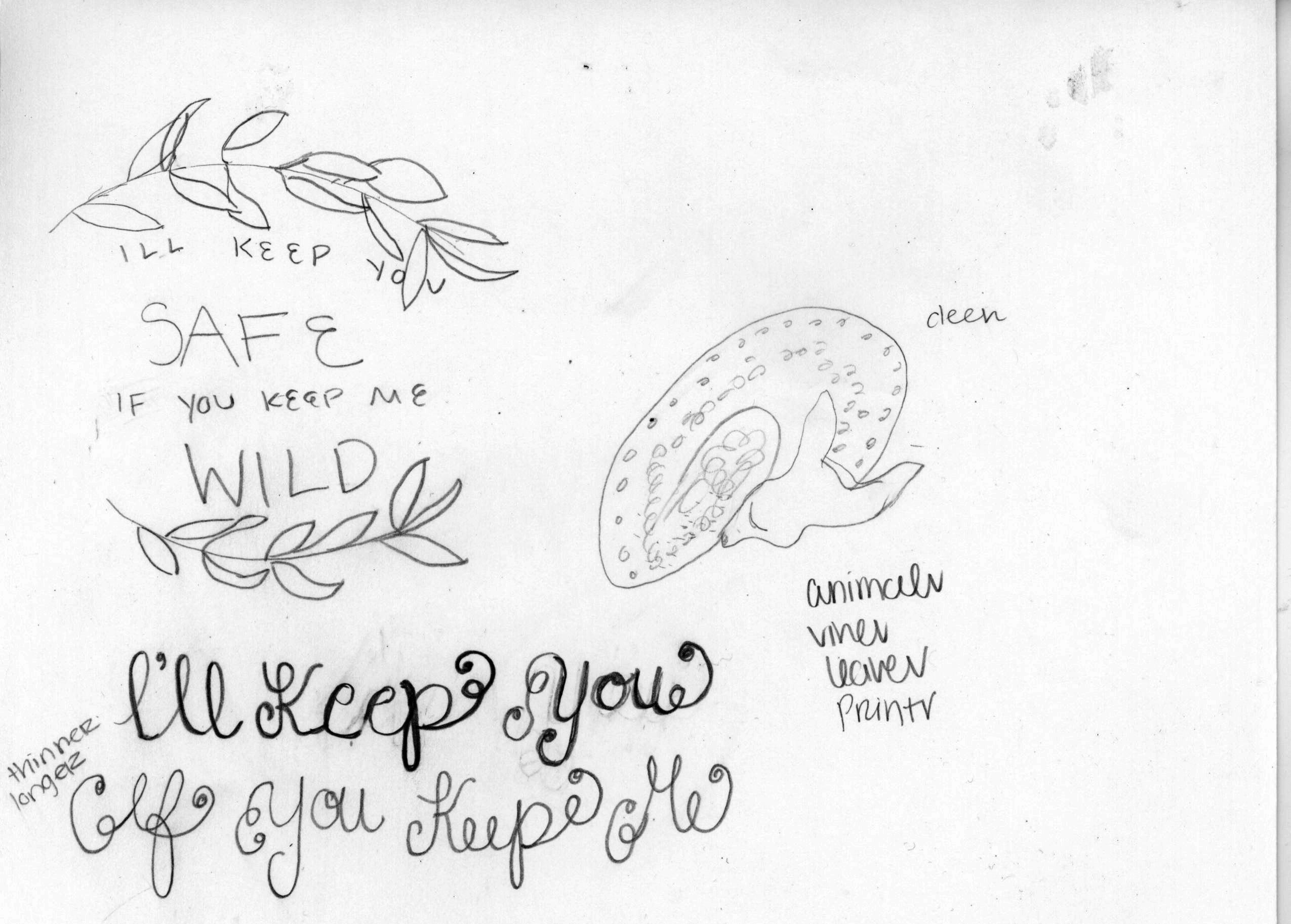 Safe  Wild  Hand Lettering Adventure  Skillshare Projects