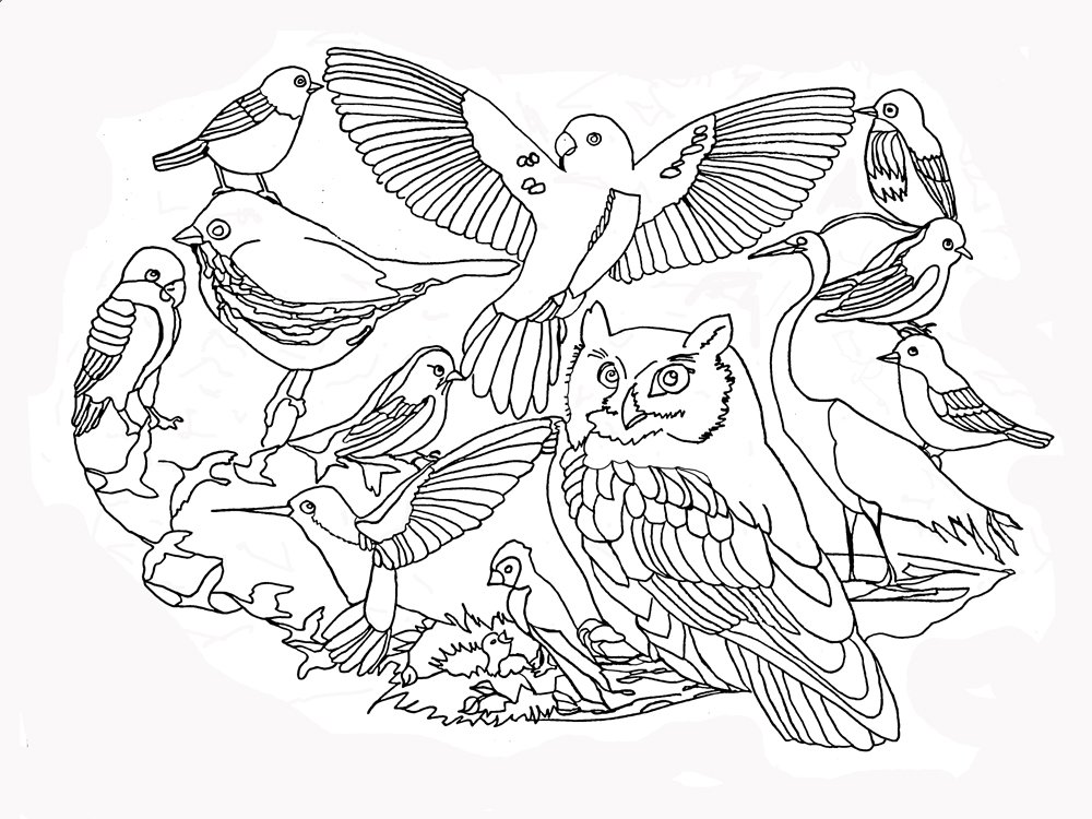 diy colouring pages for beginners