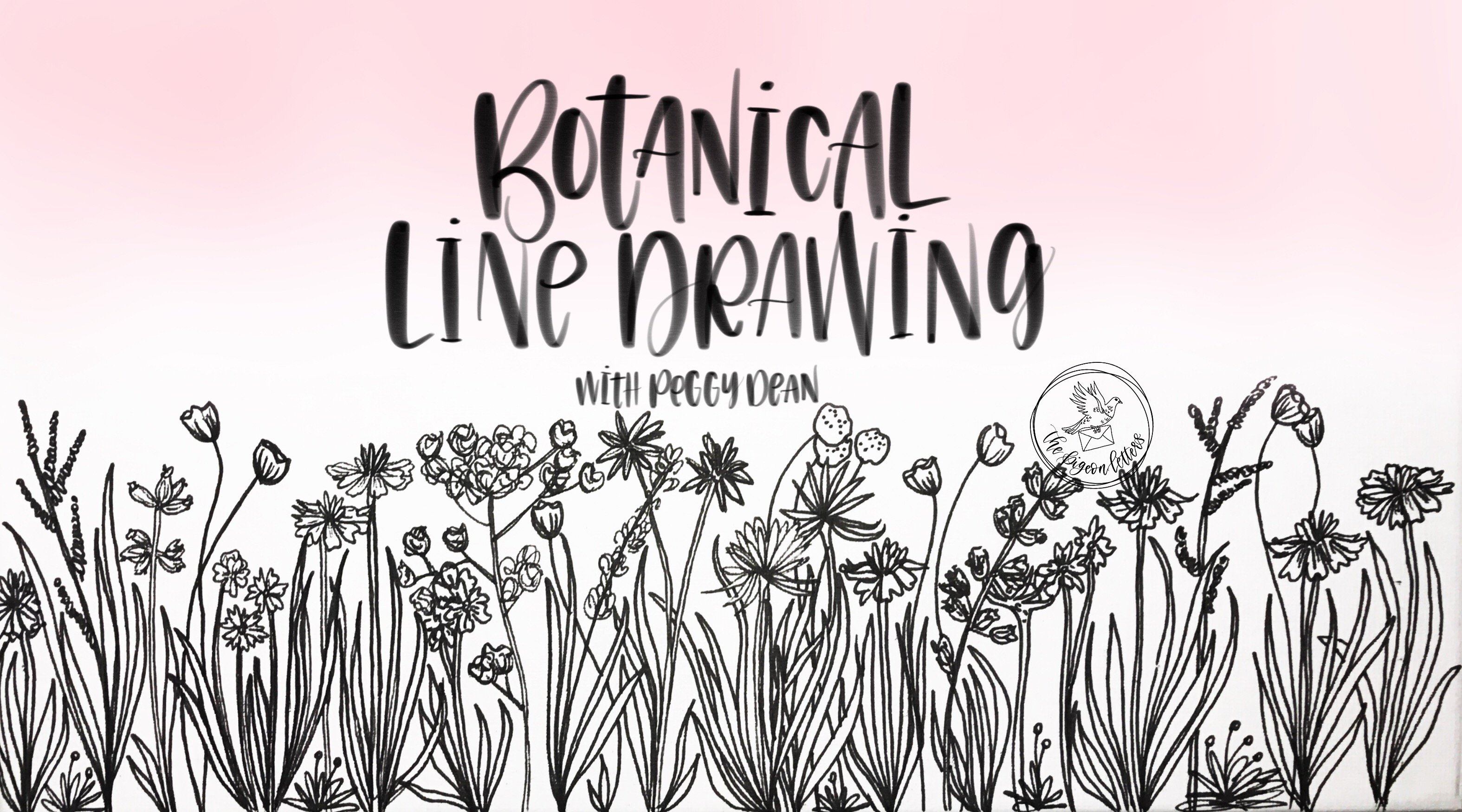 Botanical Line Drawing | Peggy Dean | Skillshare