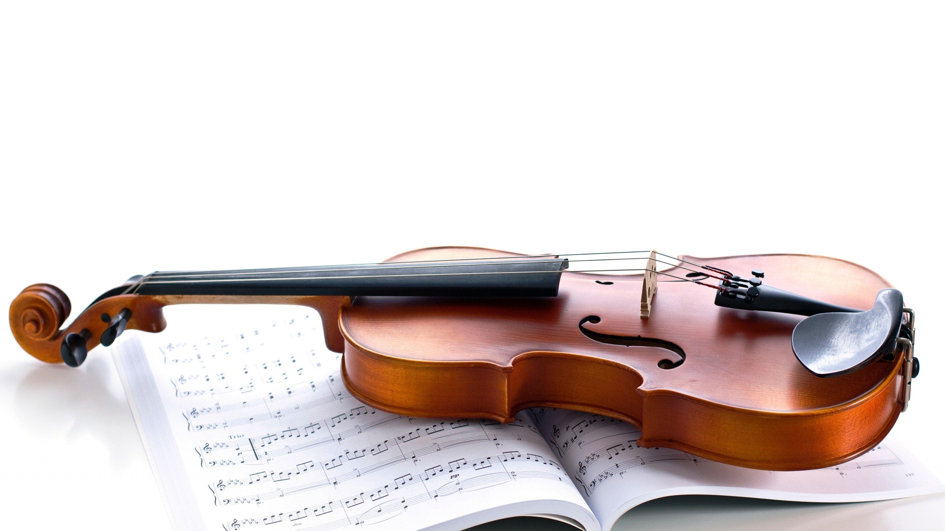 Learn To Play Violin | Daniel Martins | Skillshare