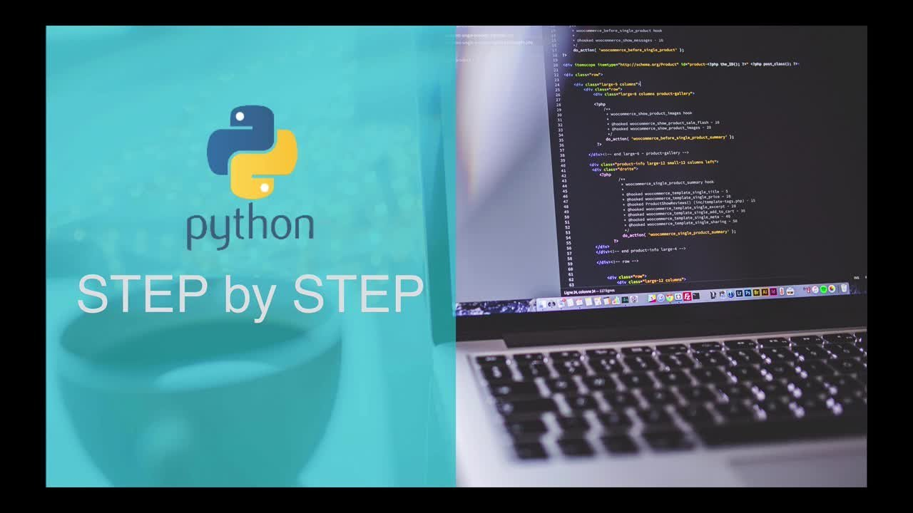 Python 3: A Beginners Guide to Python Programming