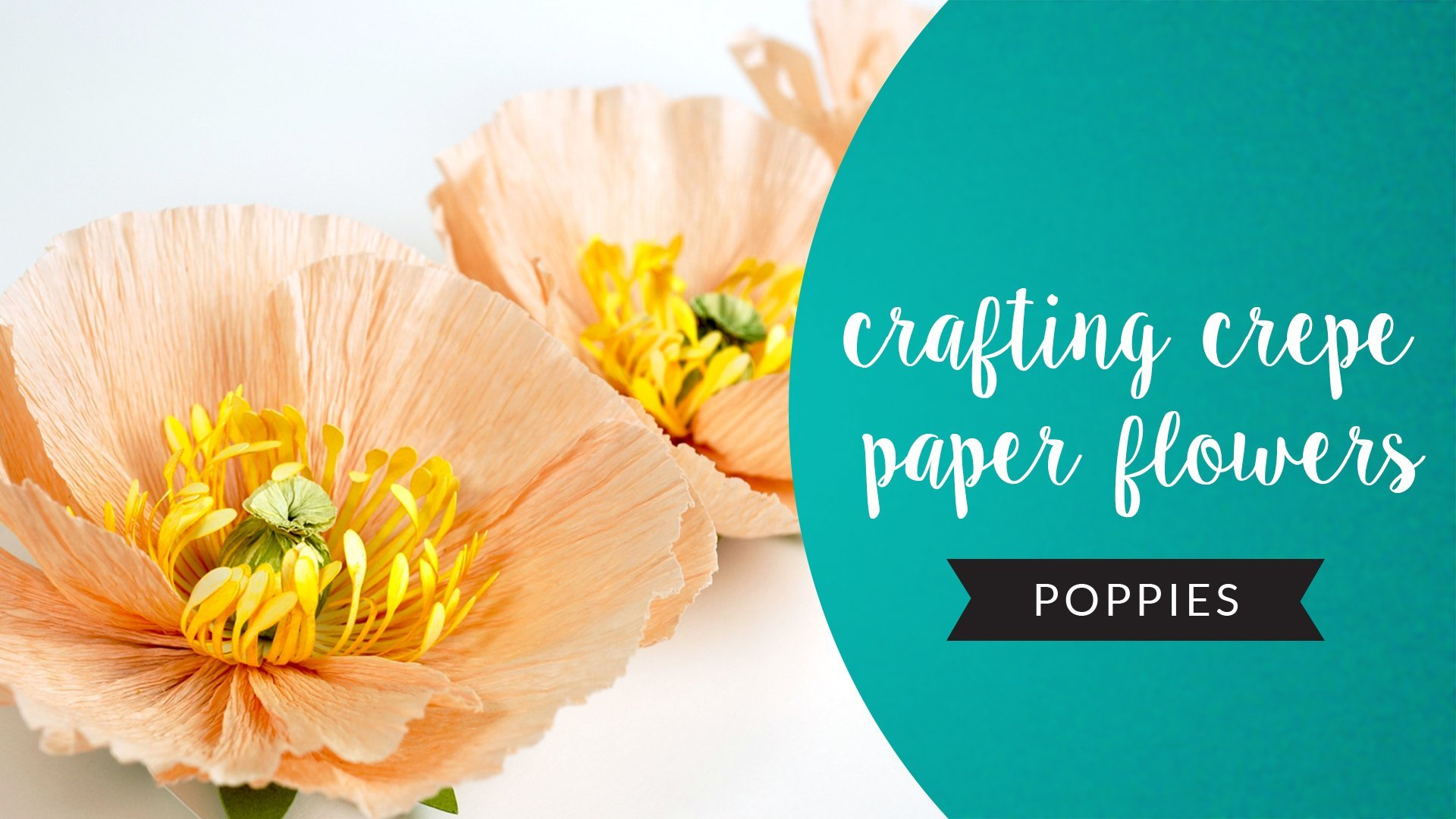 Crafting Crepe Paper Flowers Poppies Heather Grimstead Skillshare