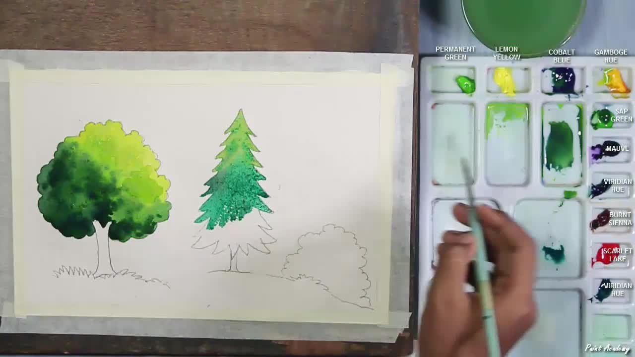 How to Paint Trees in Watercolor for Beginners   Paint