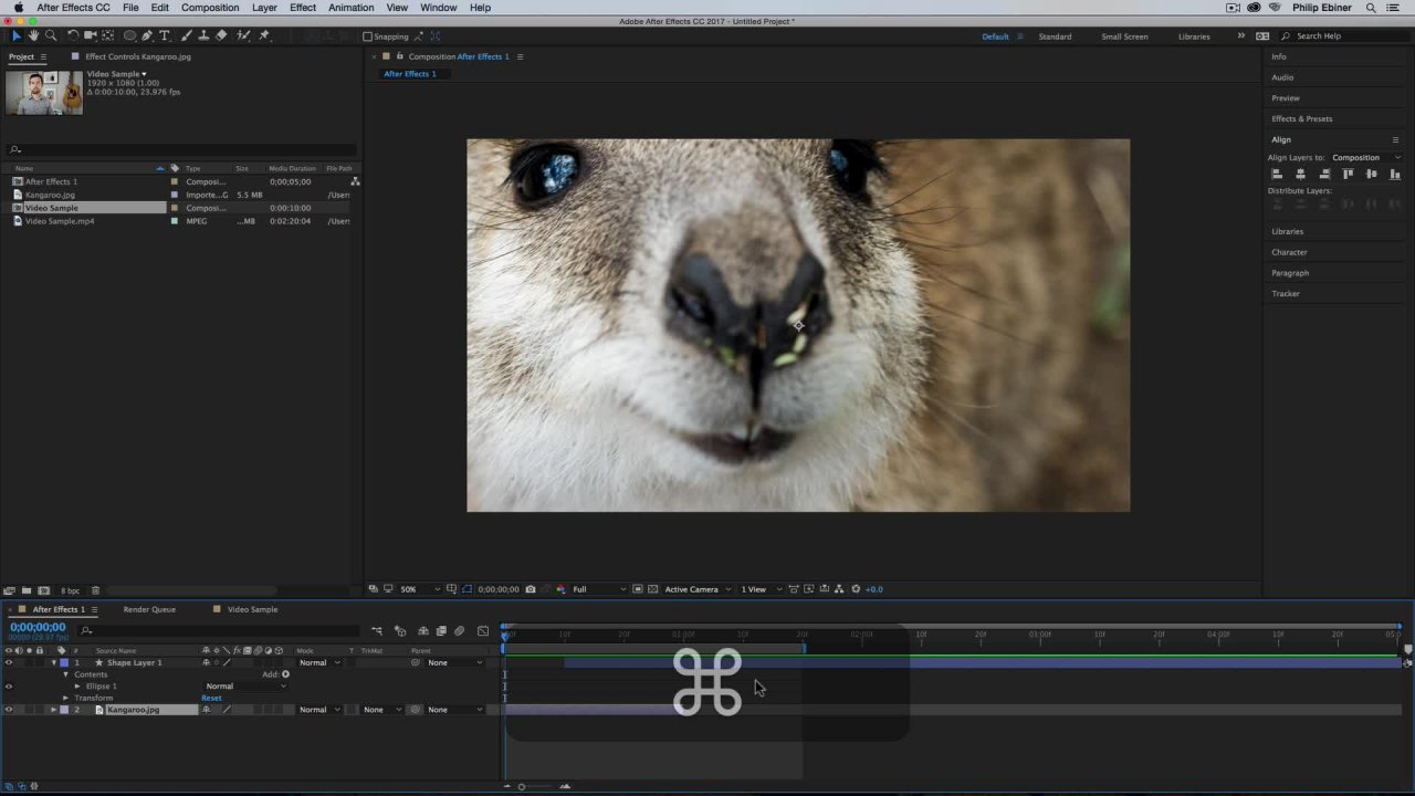 After Effects CC: The Complete Guide | Phil Ebiner | Skillshare