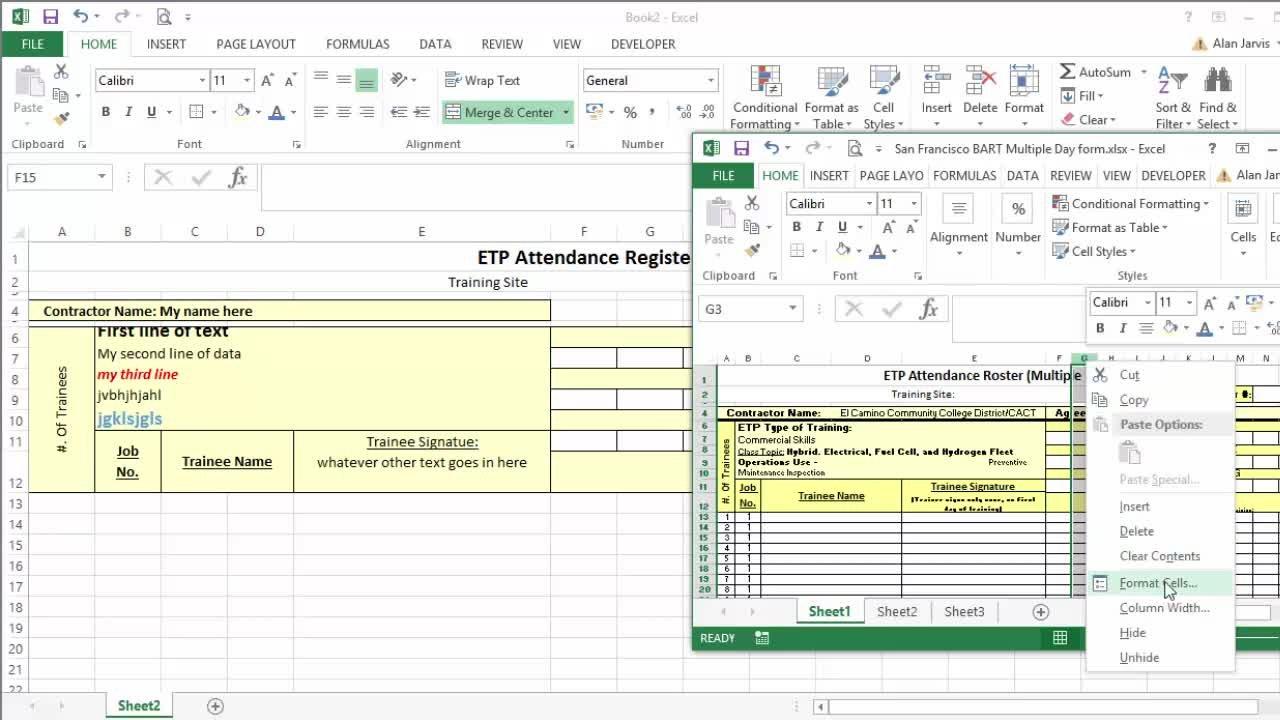 Microsoft Excel Essentials: Level 1 Basics - Master Excel