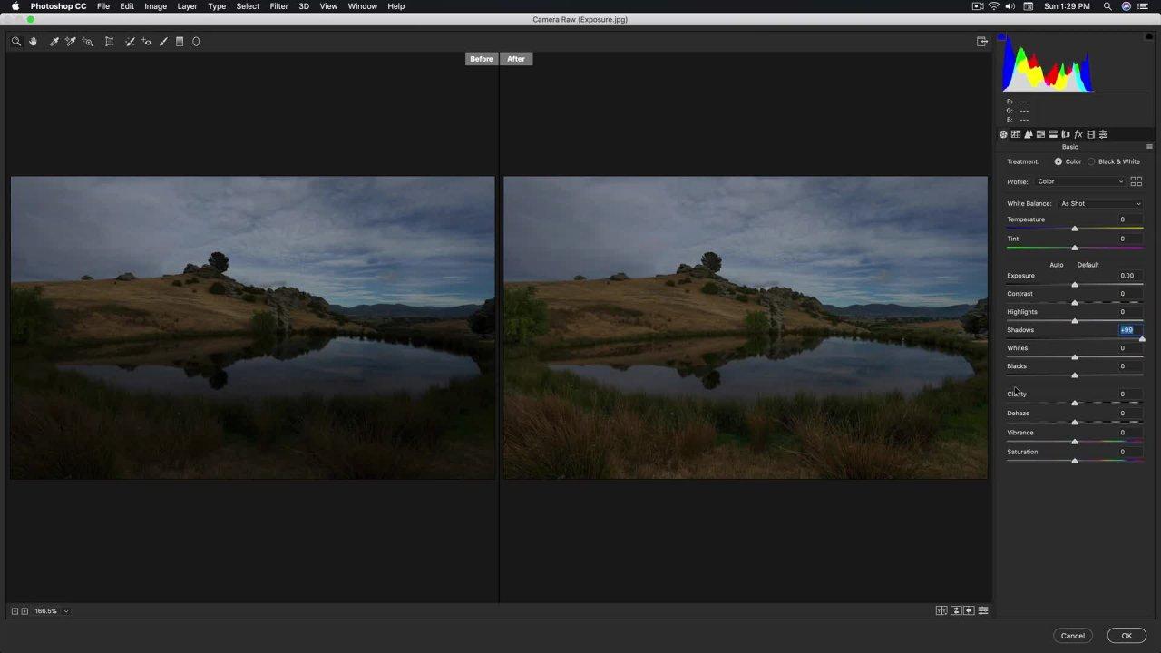 Photo Editing - Adobe Camera Raw Filter - Cinematic Styles