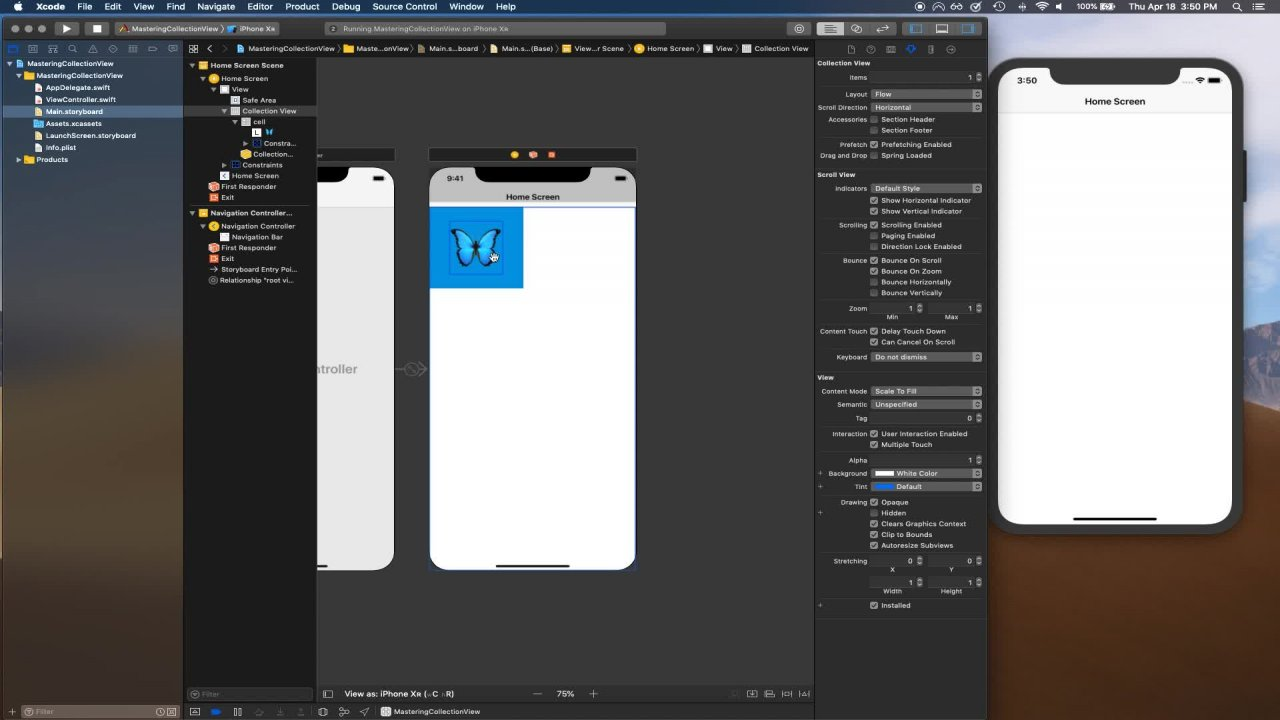 Beginning Collections Views in Swift 5 and iOS | Anoop Tomar