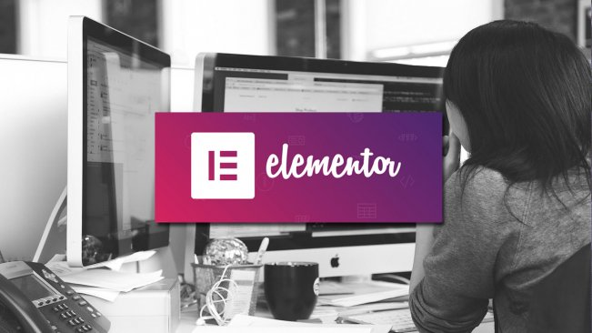Web Design Training with Elementor: Build Websites without Coding
