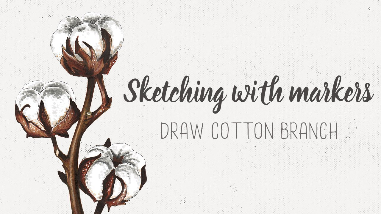 Sketching With Markers Draw A Cotton Branch Olga Shevyakova