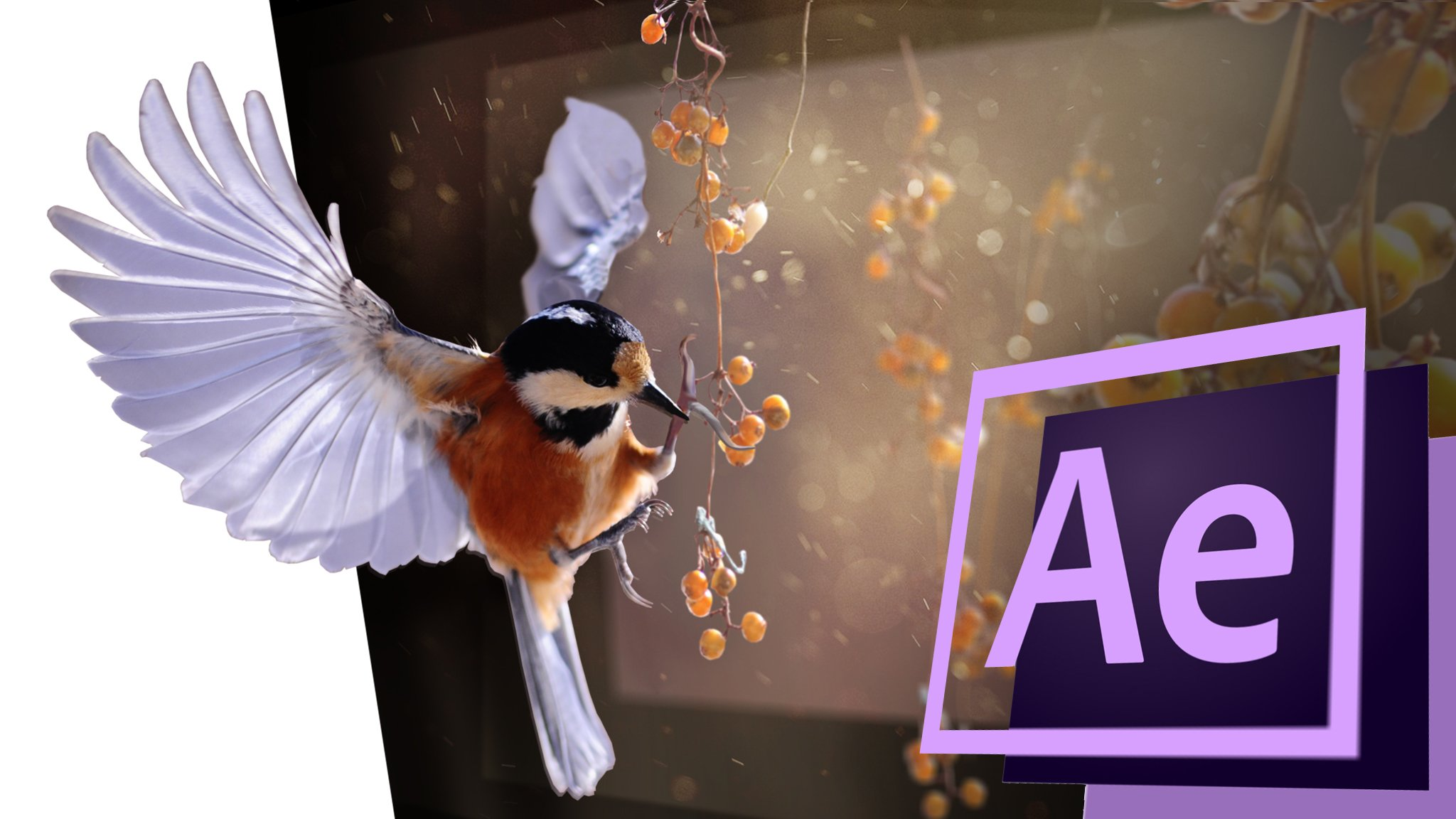 Turn a 2d photo into a 3d animation with After Effects!