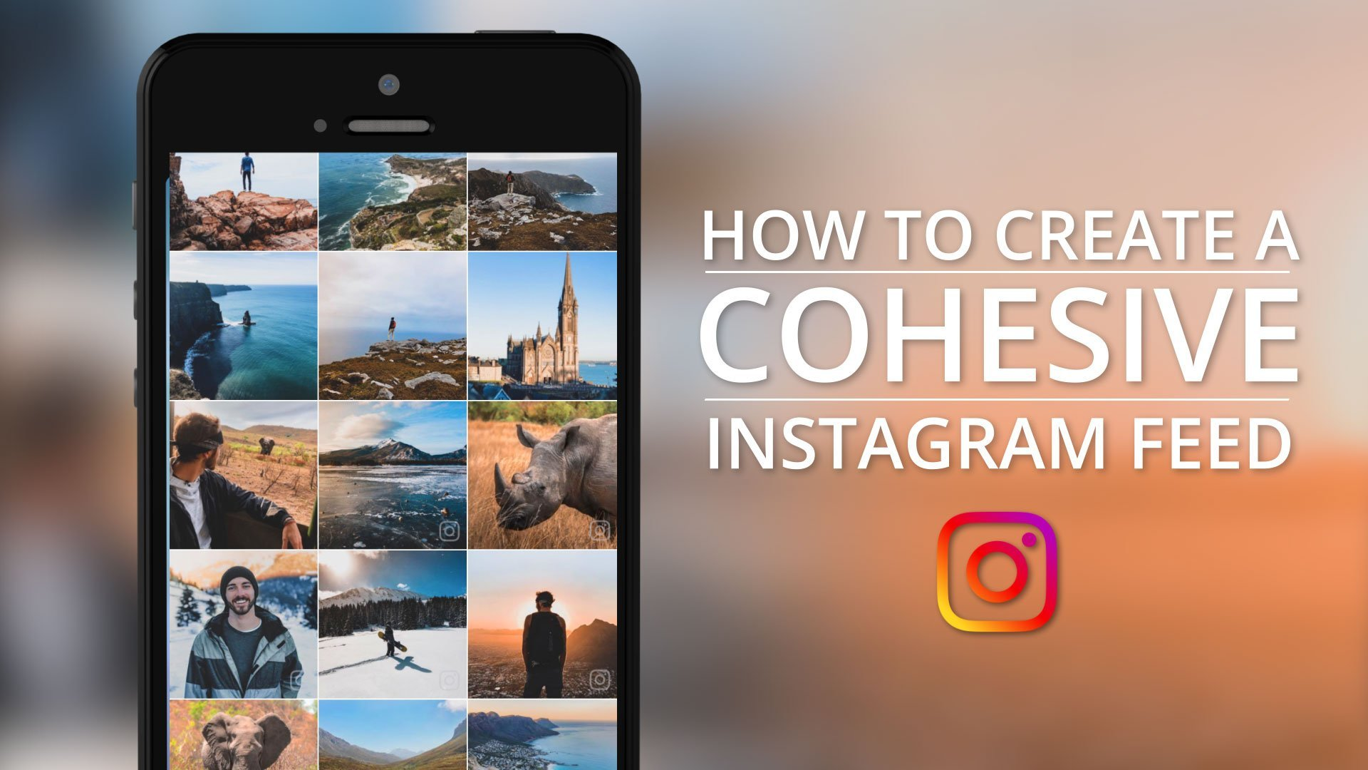 How to Create a Cohesive Instagram Feed | Using Adobe