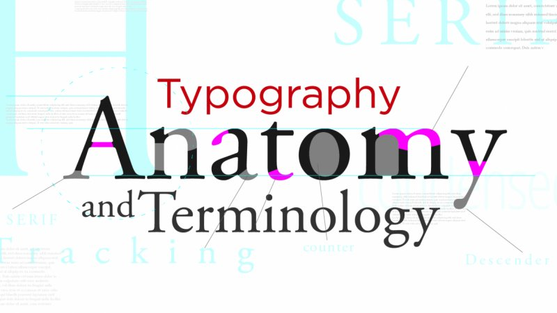 Typography Anatomy and Terminology | Joshua Butts | Skillshare